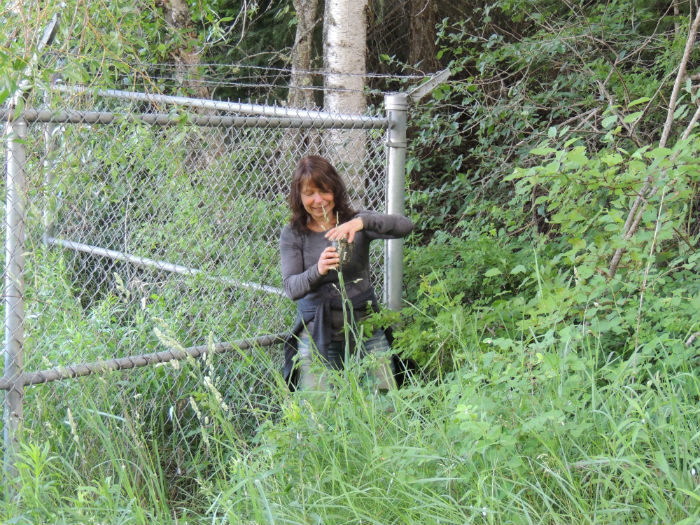 Geocaching close to home