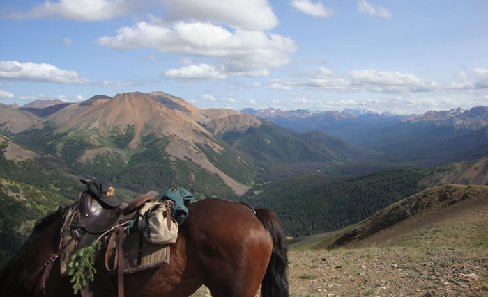 Wilderness Horse Pack Trips