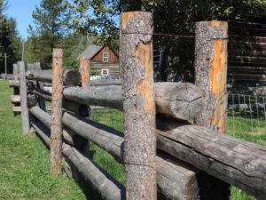 Barkerville Old Fence
