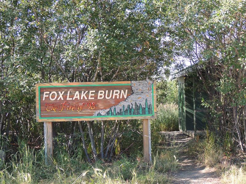 Fox Lake Burn Yukon - Forest Fire