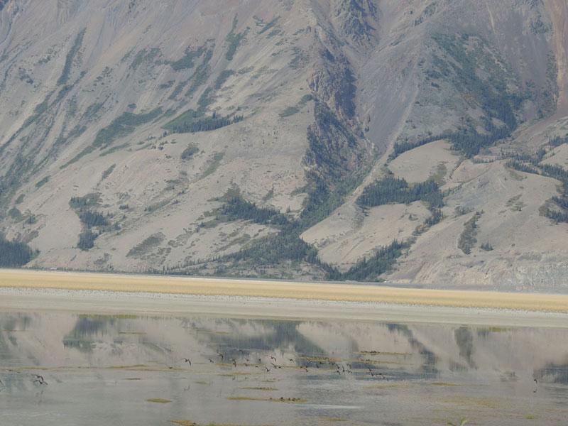 Kluane National Park Yukon Mountains