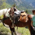 READER STORY: How Annina came to Canada to learn English and ended up as a horse guide