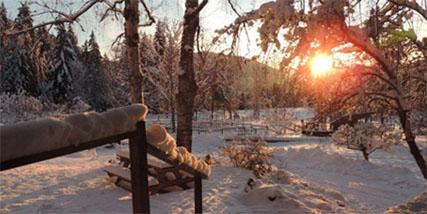 Ranch, Lumby BC
