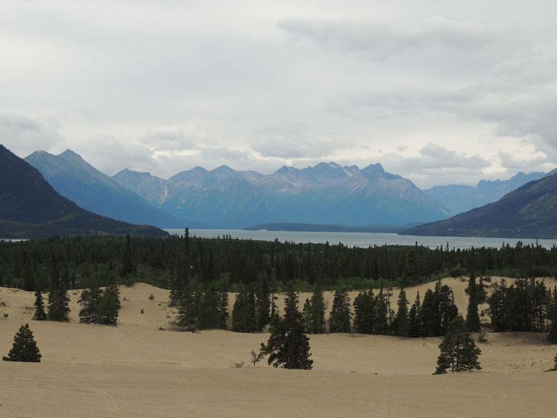 Carcross Desert, Yukon