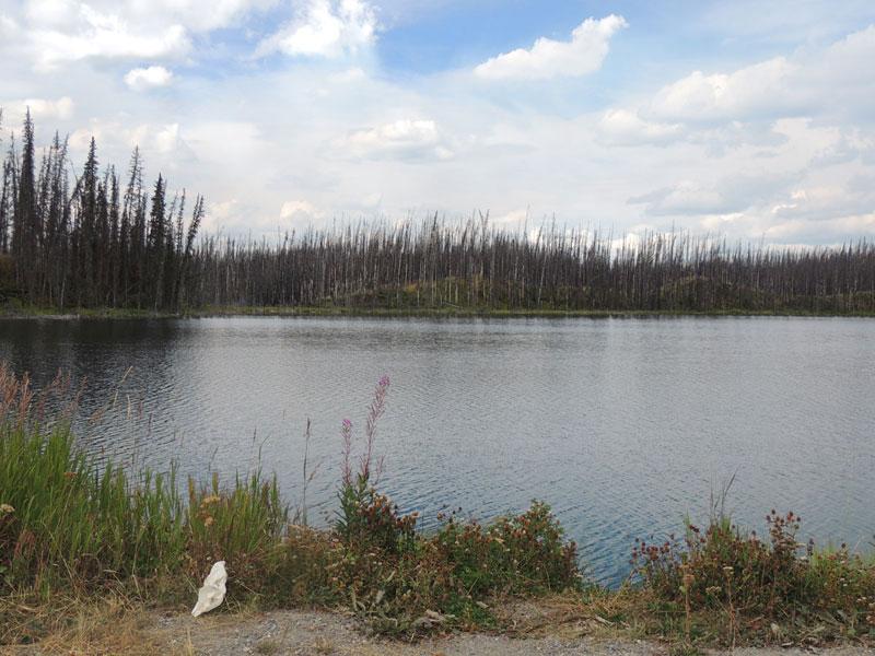 Stewart-Cassiar lake
