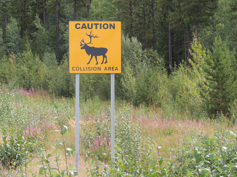Highway 37 Stewart-Cassiar Scenic Route - Backcountry Canada