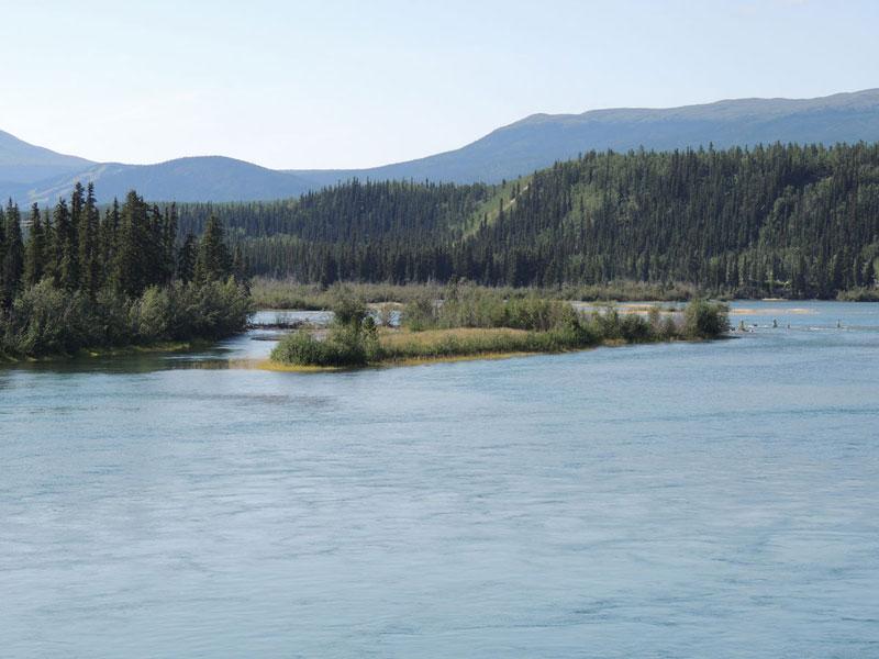 Yukon River Whitehorse