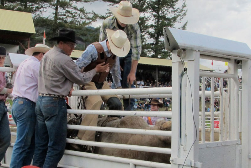 Cariboo Chilcotin - cowboying