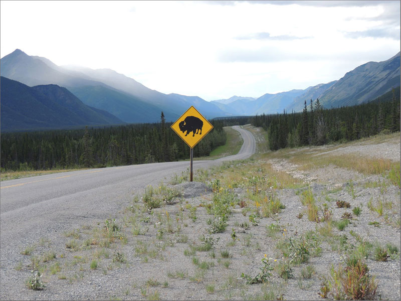Northern BC Highways