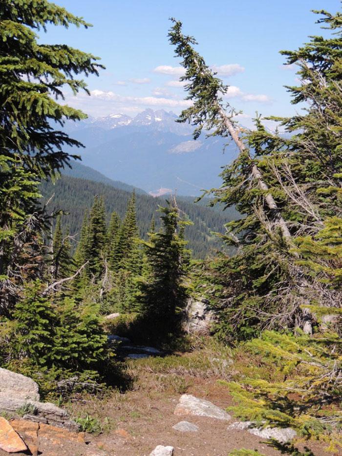 Hiking alone - trail