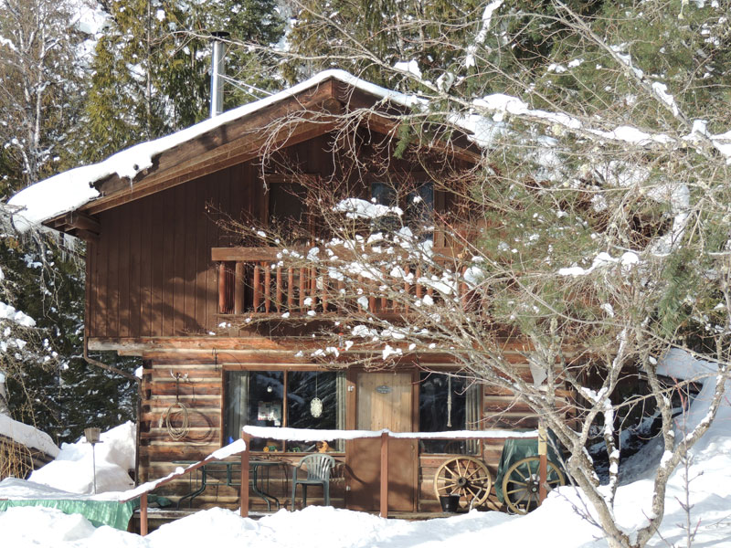 Cabin Fever in the frozen north