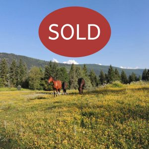 The Truth about selling Rural Property in Canada