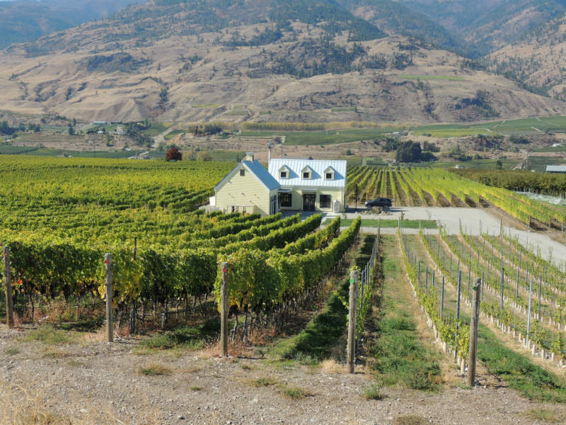 Oliver BC wineries