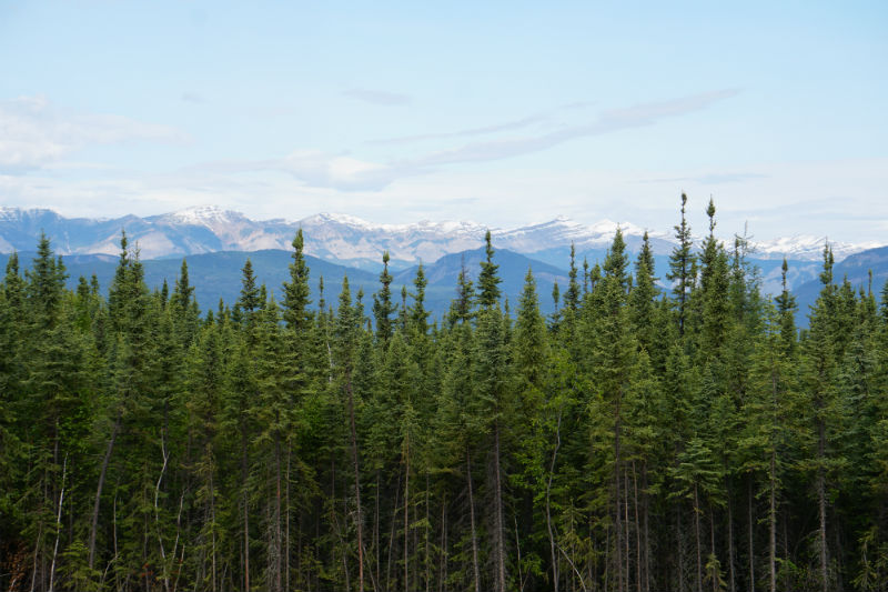 Mountain views along the Liard Trail