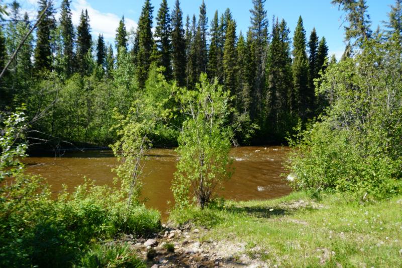 Blackstone River picnic area