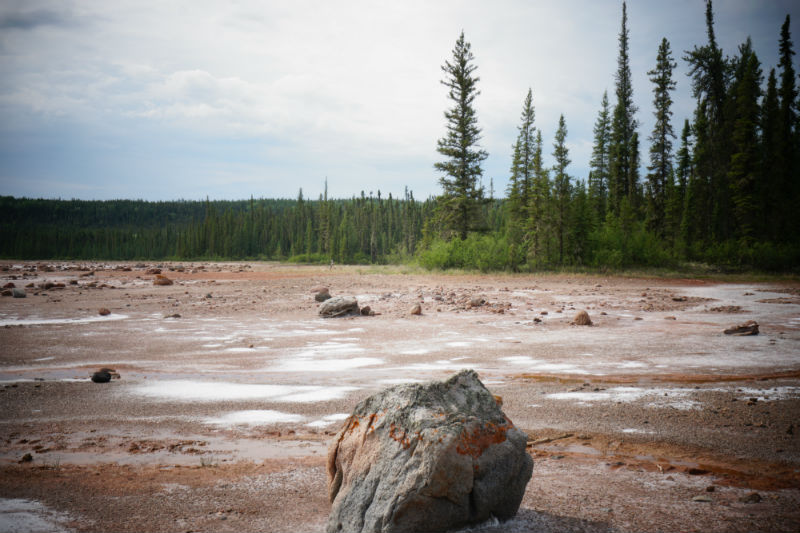 Wood Buffalo National Park salt plains