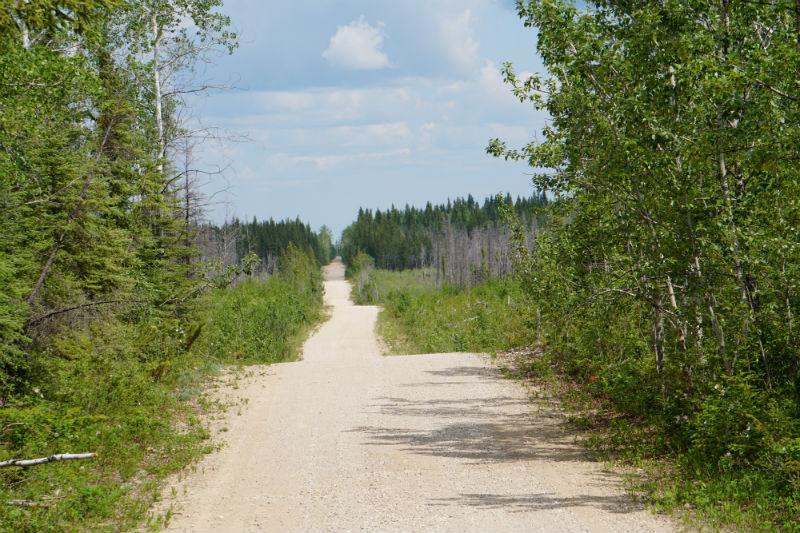 Gravel Roads at Wood Buffalo National Park