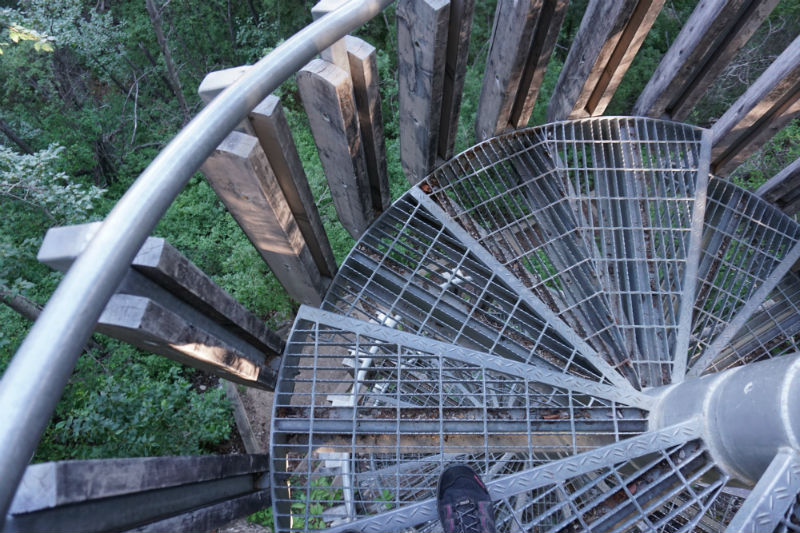 Staircase to Louise Falls NWT