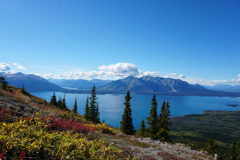 Atlin Lake, BC, view from Monarch Mountain